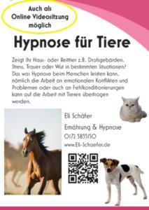 Hypnose und Tiere Eli Schaefer